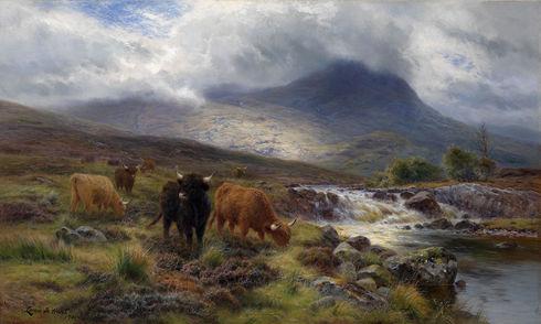 'The Highlands'